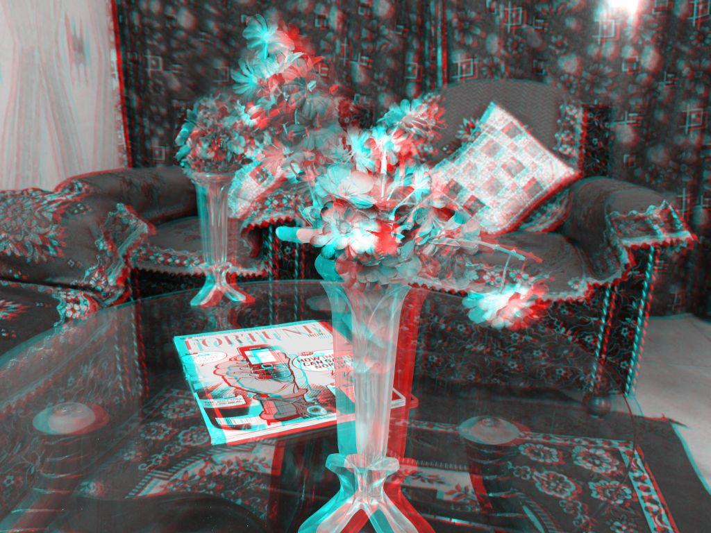 Flower Vase (Anaglyphic 3D)